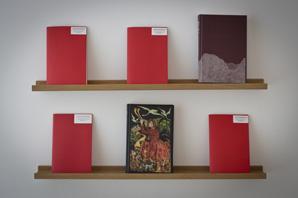 Dark Mountain books