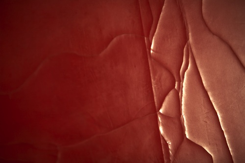 Susan_Gunn_Divided Ground: Red 2008 - DETAI