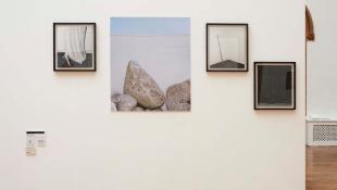 Matt Leaves, installation image