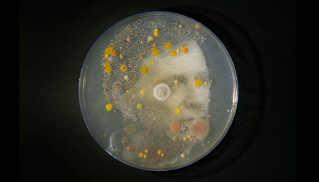 Image of microbe portrait of Jon Biddulph