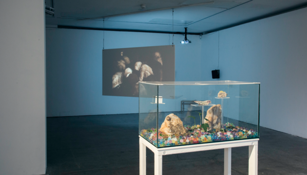 Sources (installation image) curated by Castlefield Gallery Associate Joe Preston. Image courtesy Annie Feng